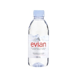 Evian Natural Mineral Water 330ml Singapore